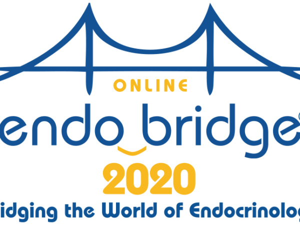 EndoBridge Online meeting