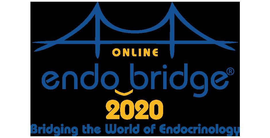 EndoBridge Online meeting